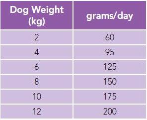 Dog Feeding Guide